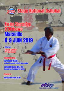 stage karate juin 2019